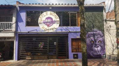 Hostales Baratos - Purple Monkey Hostel