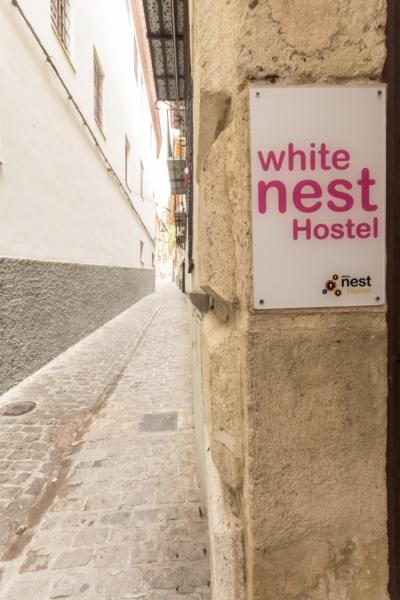 Hostales y Albergues - White Nest Hostel