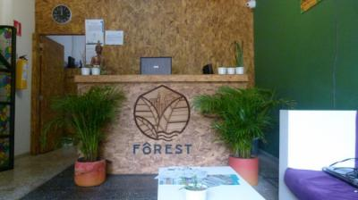 Hostales y Albergues - Forest Hostel