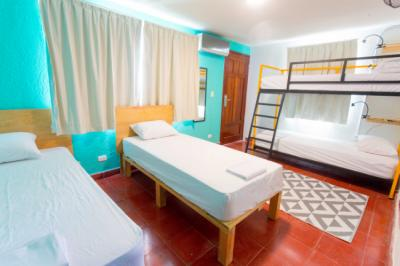Hostales y Albergues - Hostel Selina Cancun Downtown